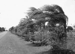 Верет - сила стихии